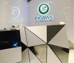 Ogawa 03